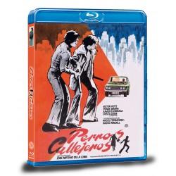 PERROS CALLEJEROS (Blu-ray)